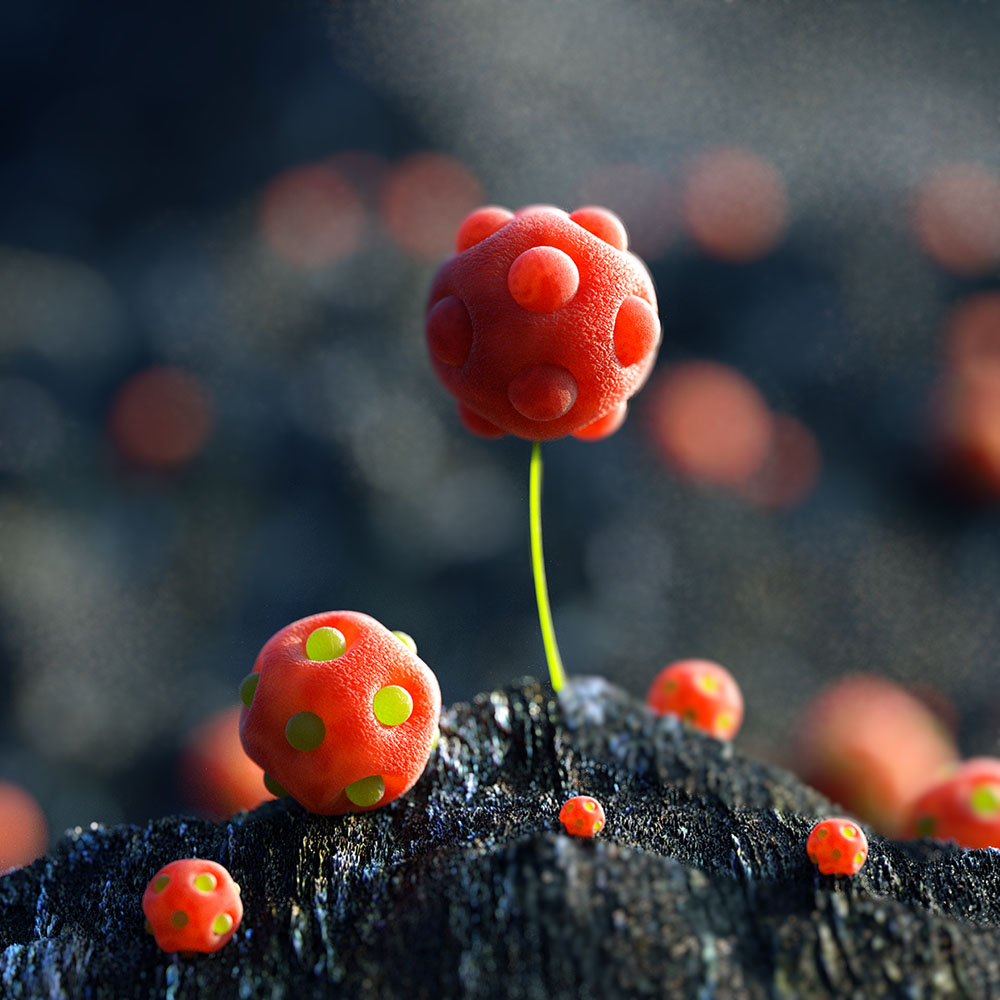 Alien Planet of Candy, by David Brodeur