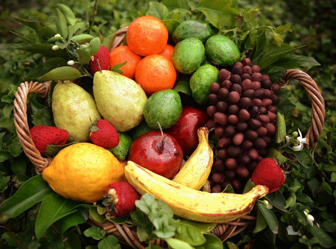 Fruit Deceptive Desserts
