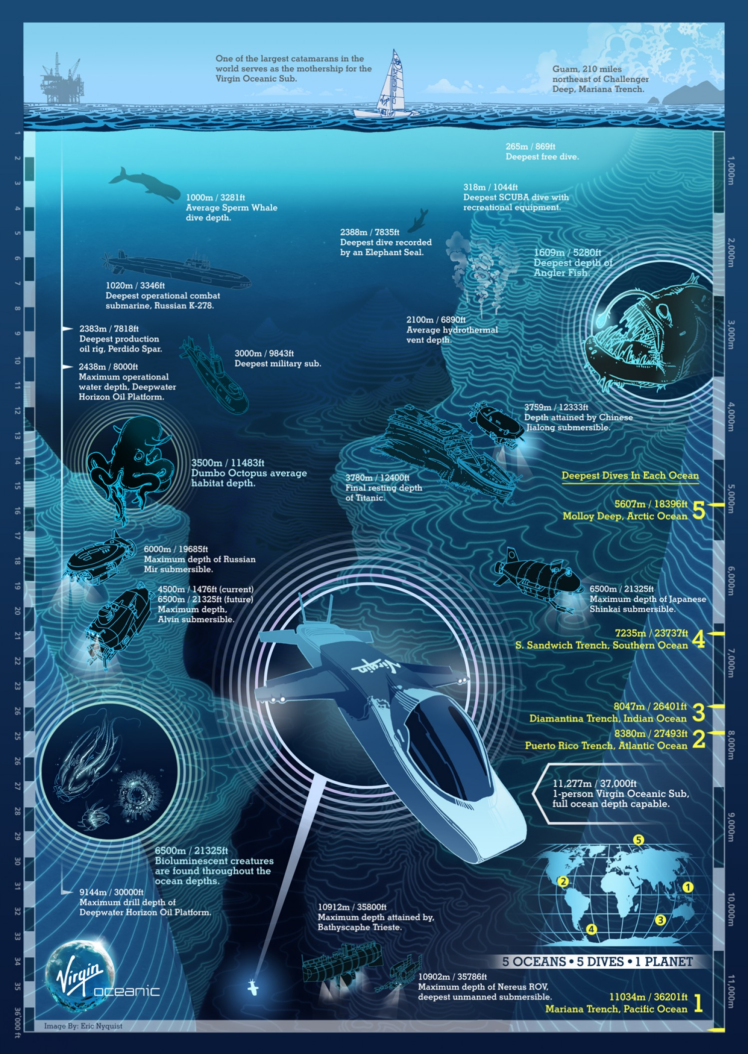 Map the Ocean Floor Infographic