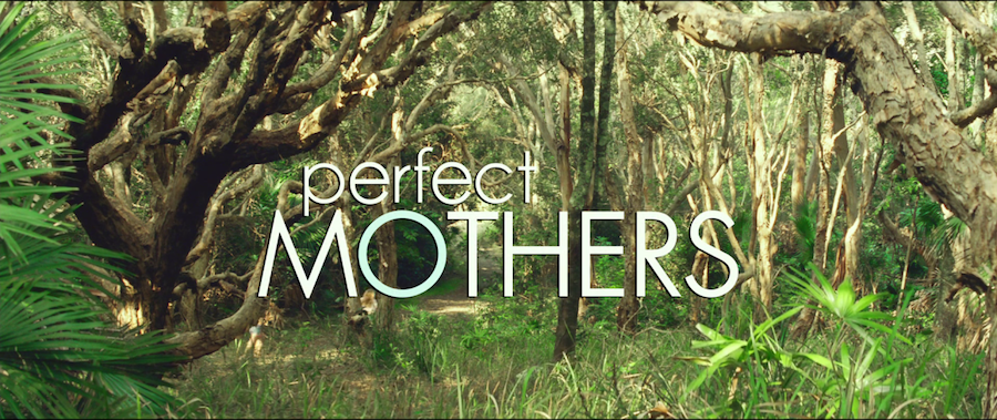 movie title design perfect mothers