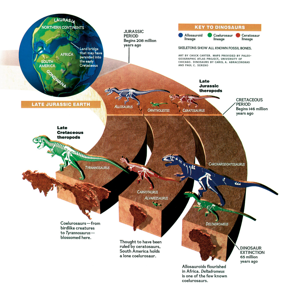 National Geographic Infographics: Dinosaurs