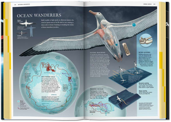 National Geographic Infographics Spread