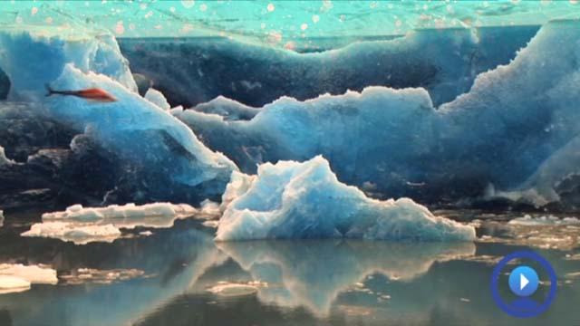 Career Exploration, Climate Scientist