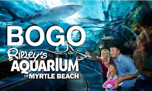Ripley's Aquarium BOGO