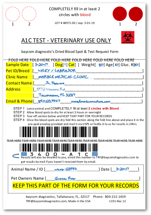A1c Test Now Available for Cats and Dogs