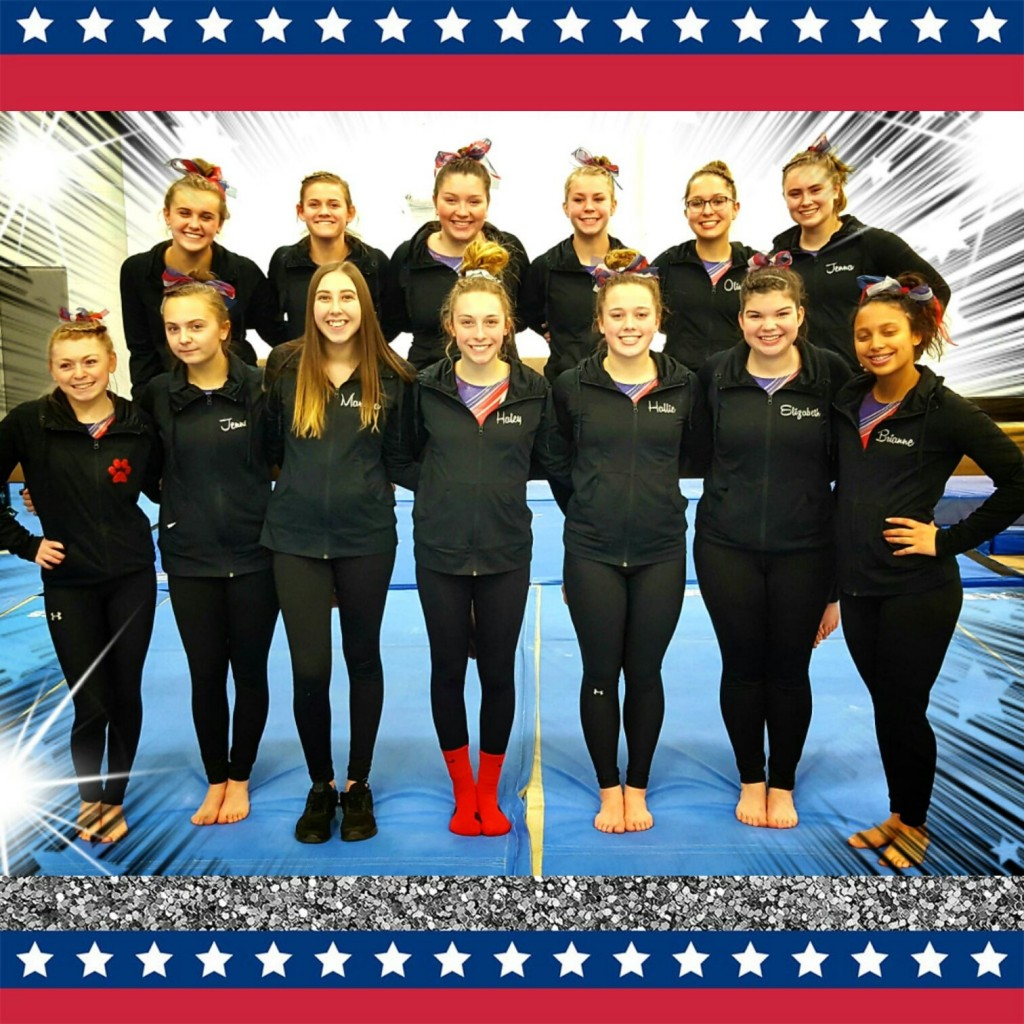 port huron gymnastics meet 2014