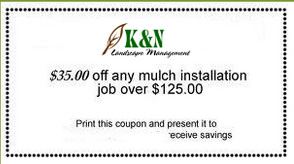 $35 Off Mulch Installation