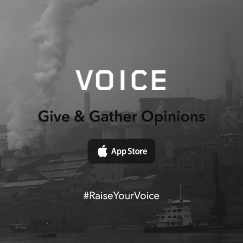 Voice - Give & Gather Opinions