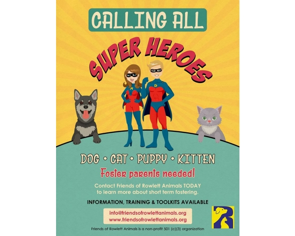 Fosters Needed! Calling All Super Heroes!
