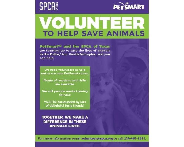 PetSmart Cat Program-SPCA of Texas- Grand Prairie