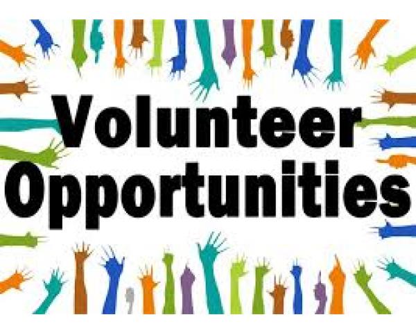 General Volunteer Opportunity (Gabe Allen ES)