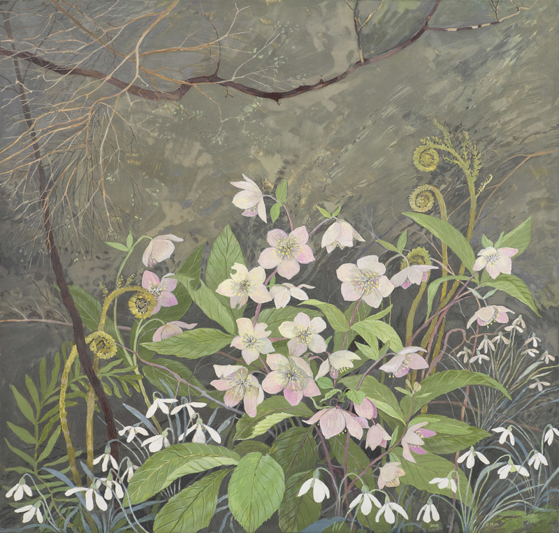 Hellebores and Snowdrops by Gary Milek