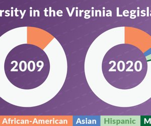 Diversity in the Virginia Legislature: 2009-2020