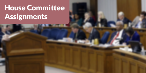 2015 House Committee Assignments