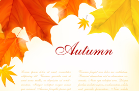Leafy Autumn Background Vector and PSD Pack
