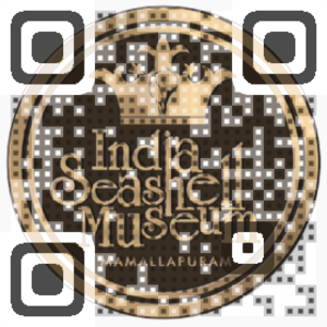 India Seashell Museum QR Code