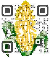 사진 QR 코드