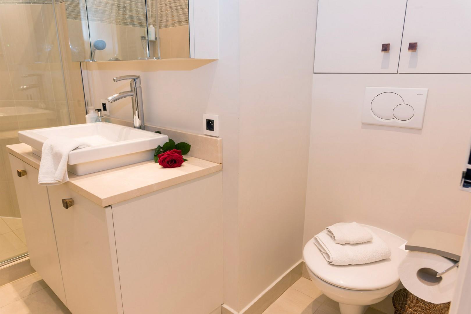 Economic motorized toilet in bathroom 2