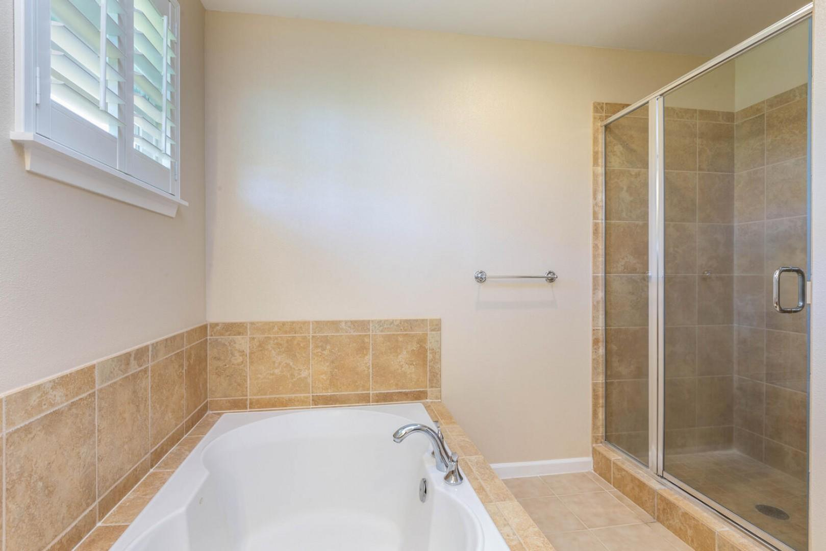 Master bathtub with separate tile shower