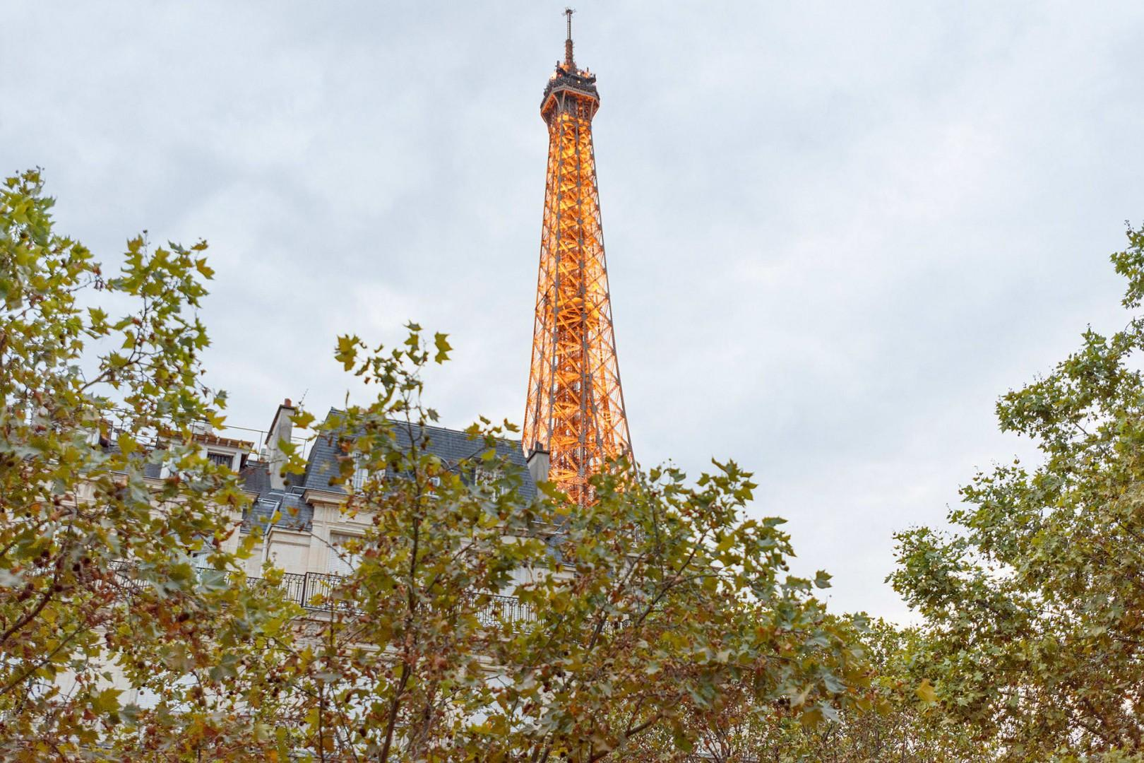 Enjoy the view of the Eiffel Tower peaking over rooftops.