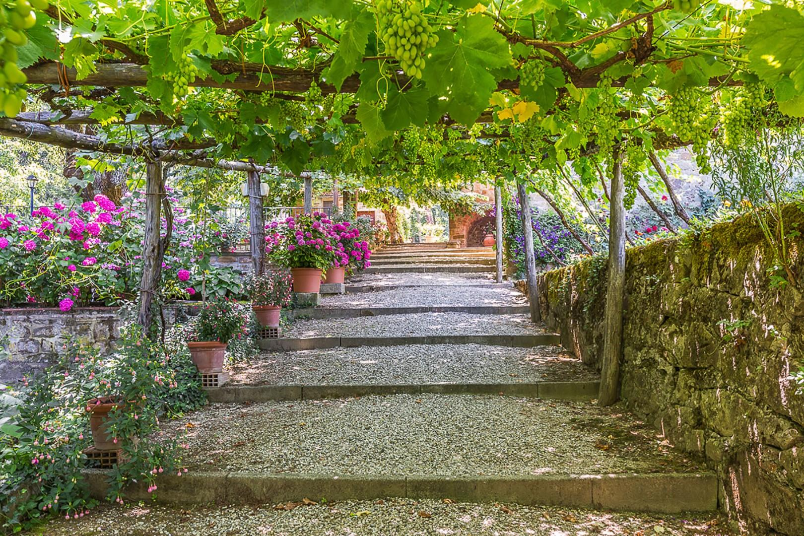 Grapevine covered pergola beckons you down a gravel path to the swimming pool and outdoor Jacuzzi.