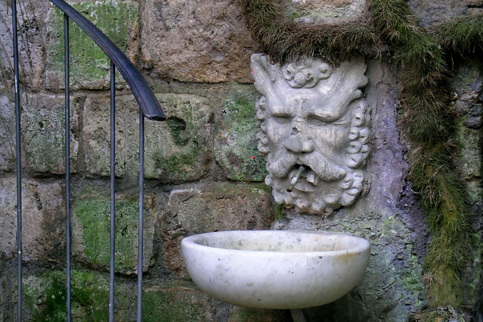 Garden god.
