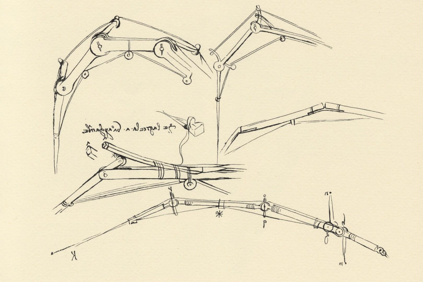 Leonardo da Vinci diagram of a proposed flying machine