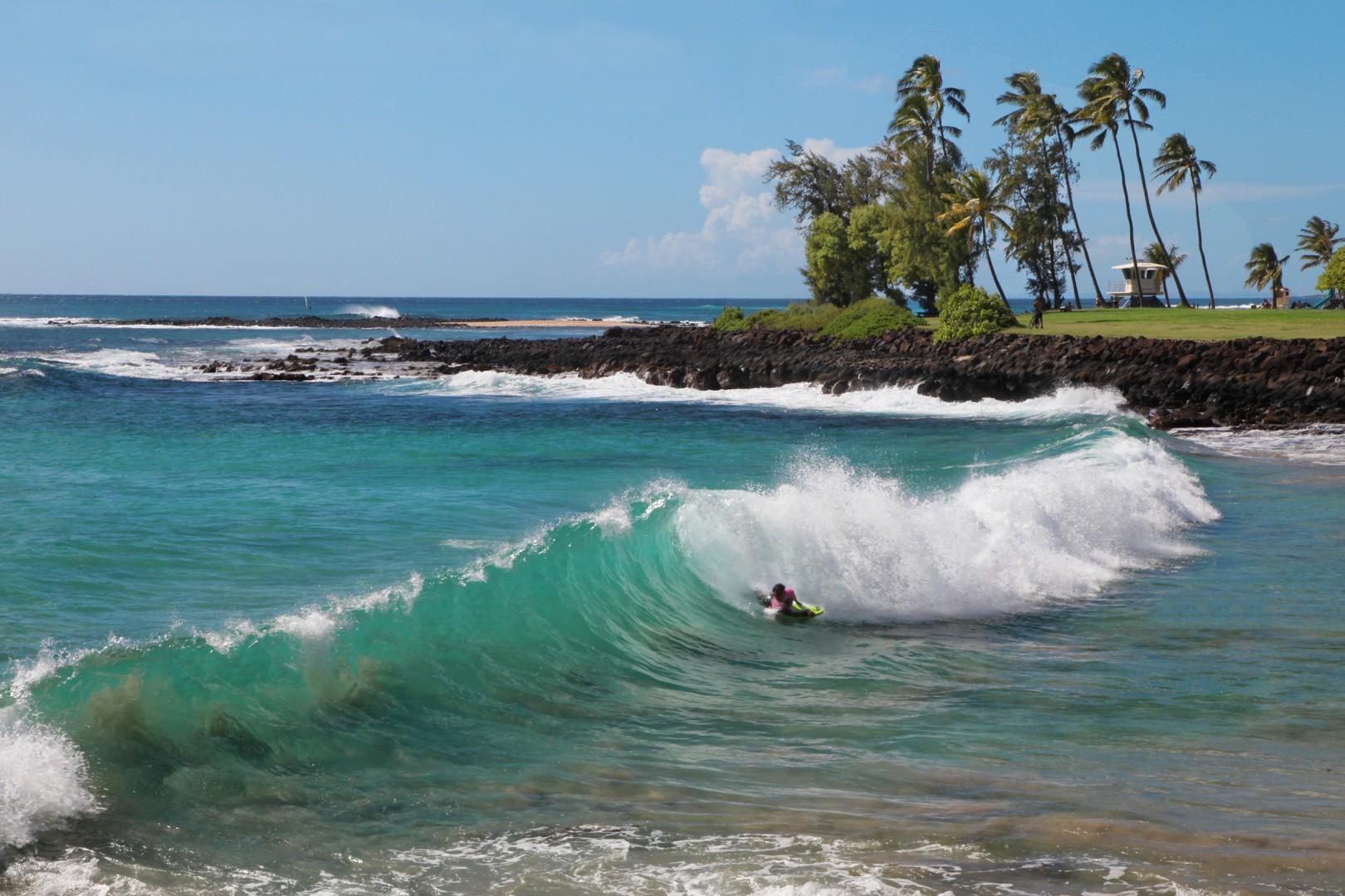 brennekes beach boarder