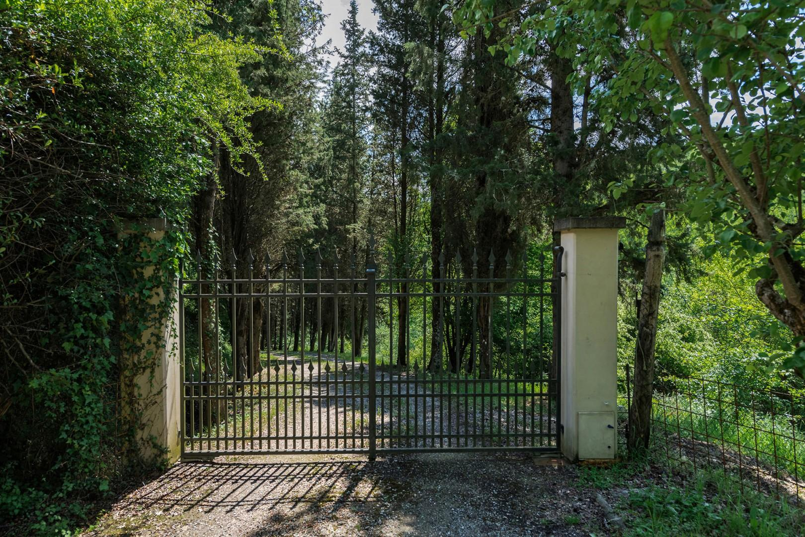 Electric entry gate