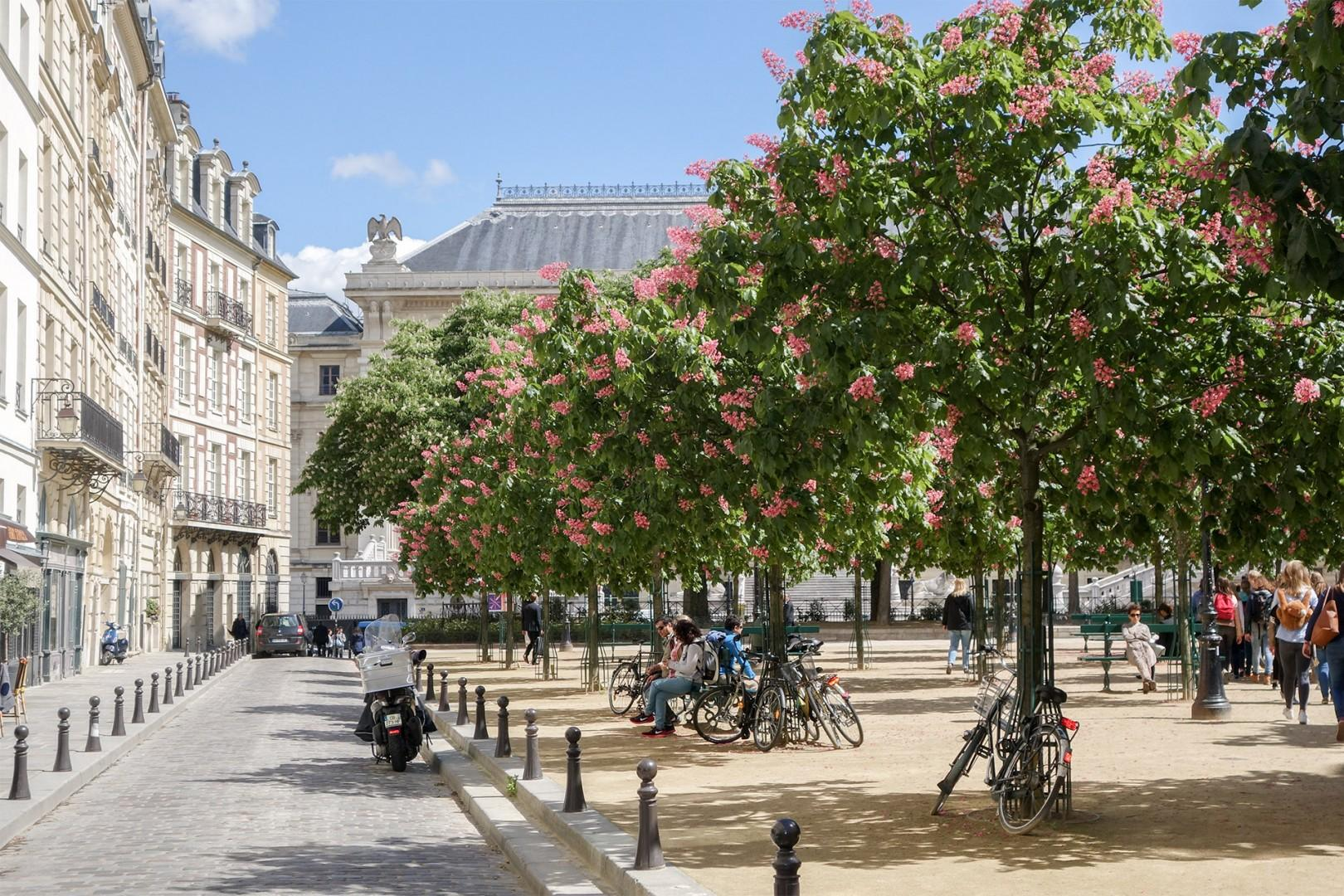 CMS-32-(Place Dauphine is one of the most romantic spots in Paris!)-Madelyn-place-dauphine-2