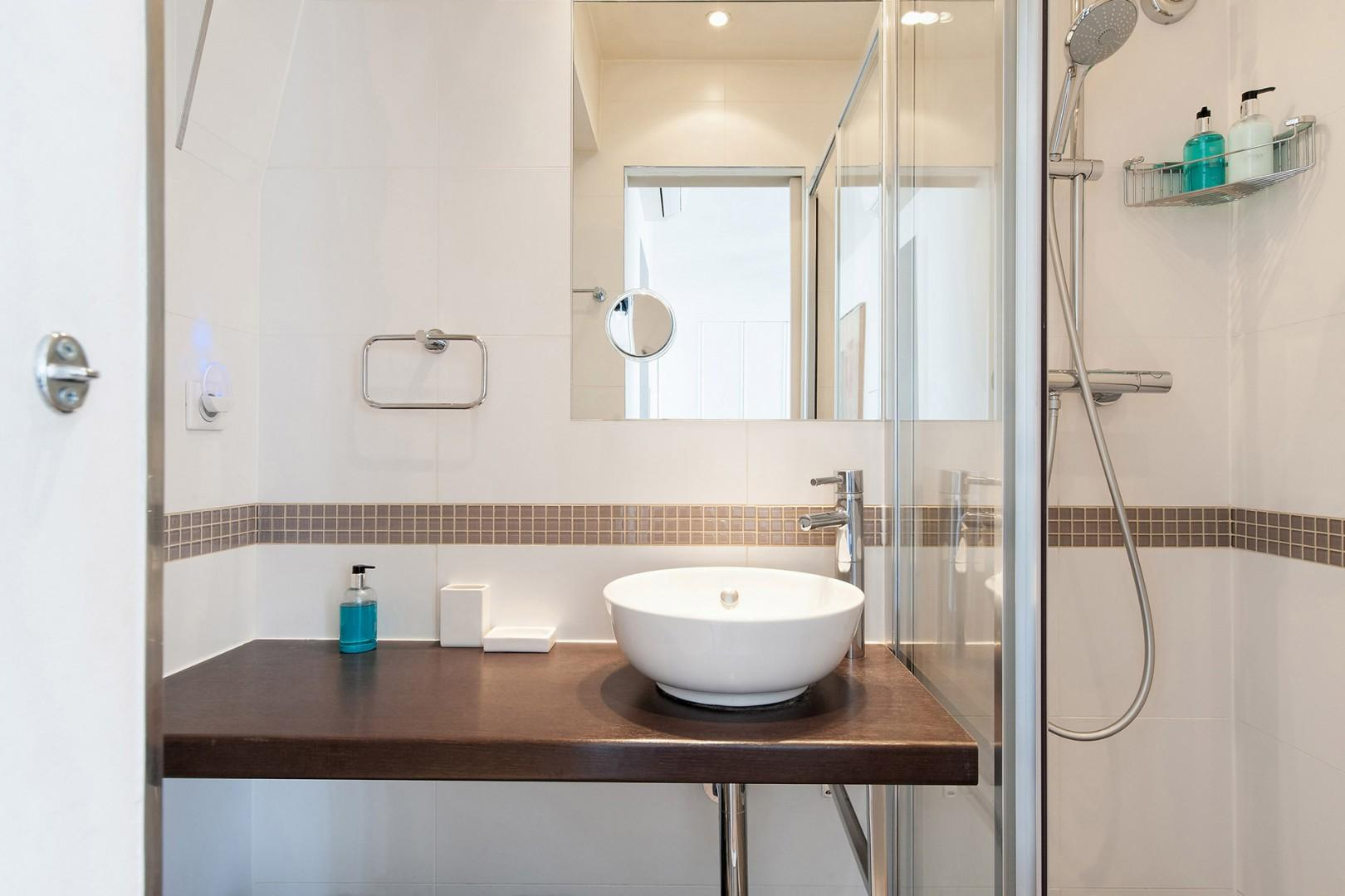 CMS-16-(Bathroom 2 comes with a shower, toilet and sink.)-12-palette-bathroom