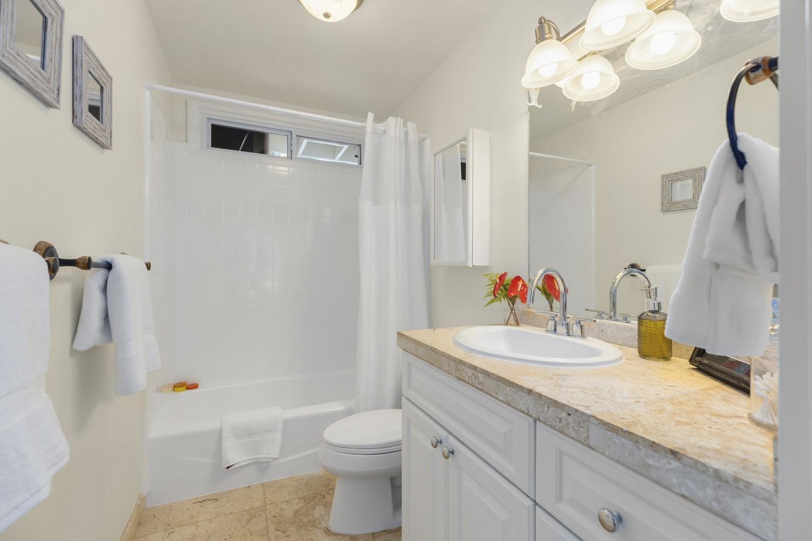 Downstairs Shared Hallway Bathroom