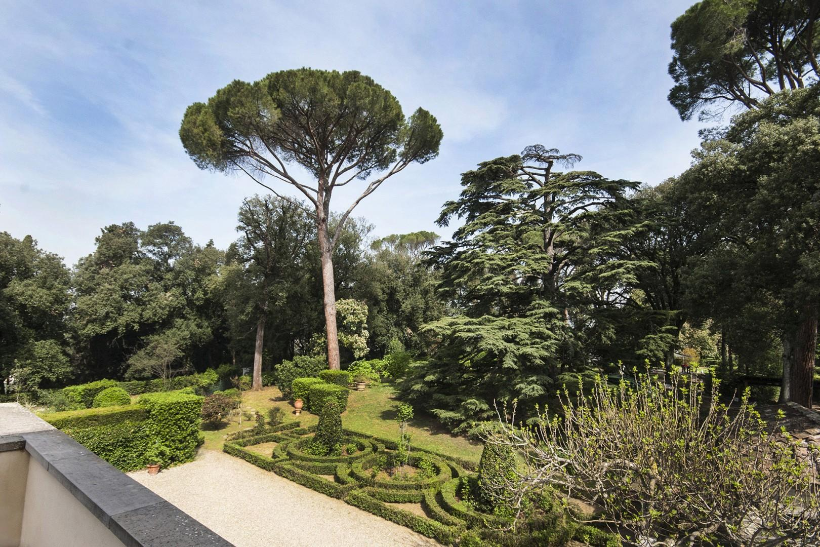 Well-manicured garden and umbrella pines so characteristic of Italy.