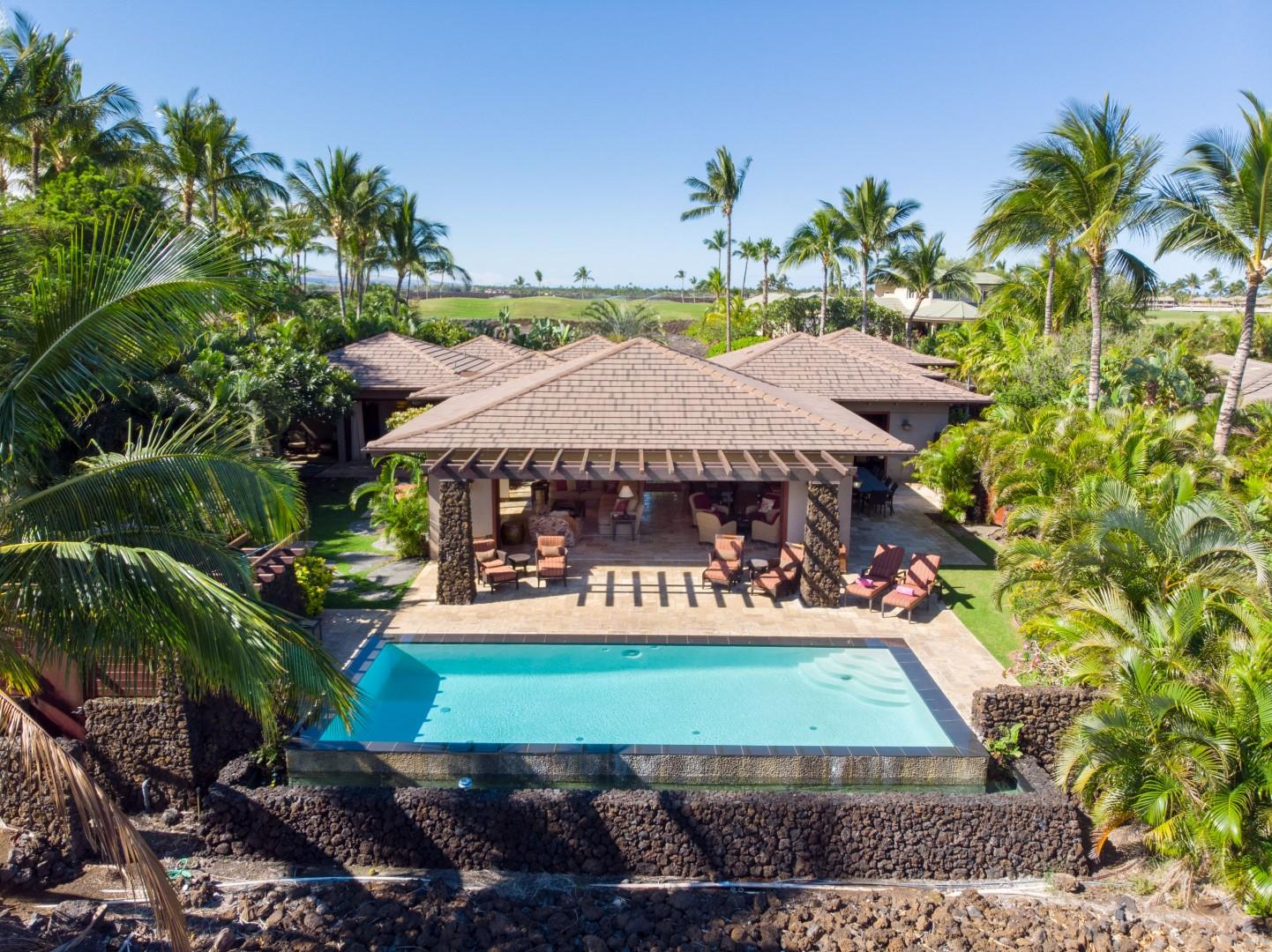 A Tropical Oasis Surrounded by Lush Foliage