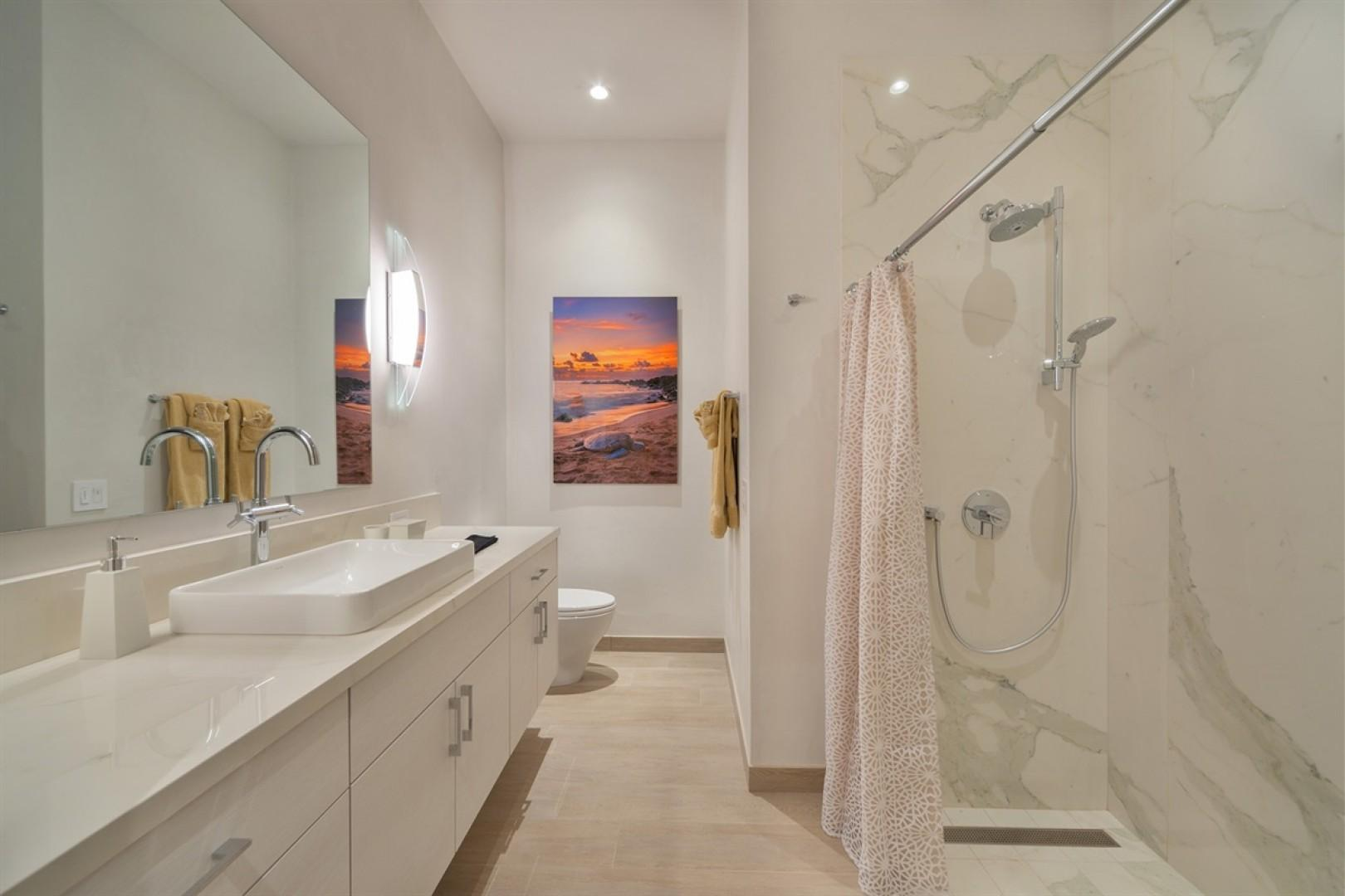 Guest bath with walk-in shower.