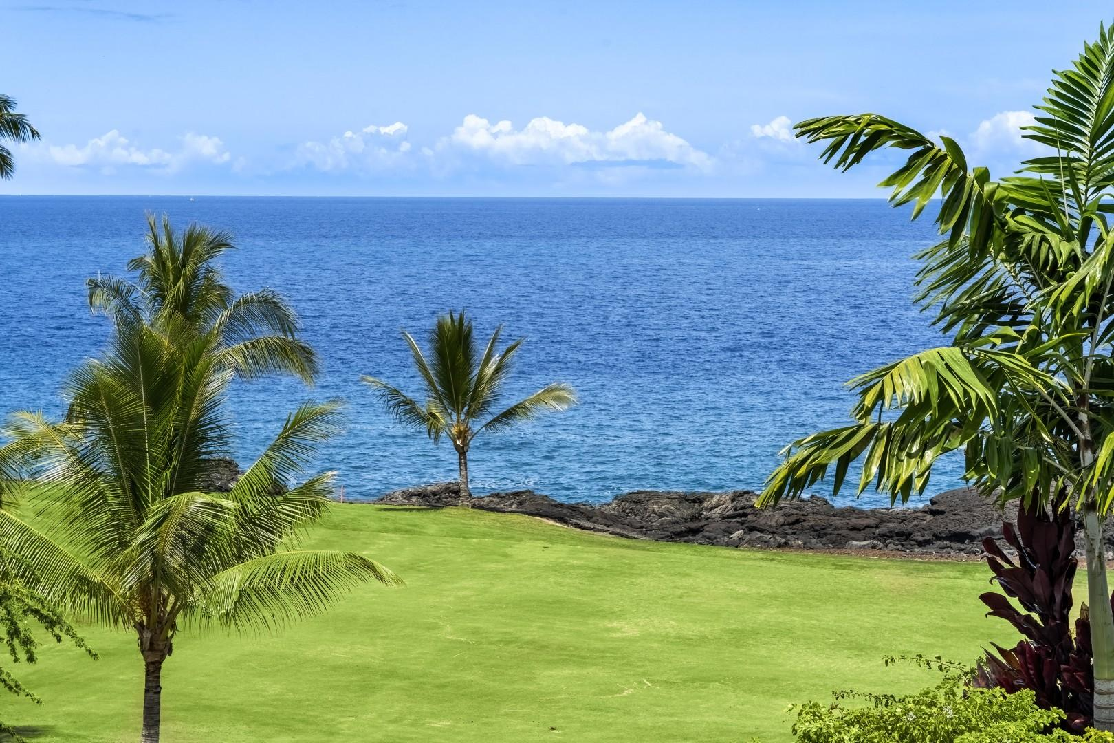 Views from the yard of the coastline!