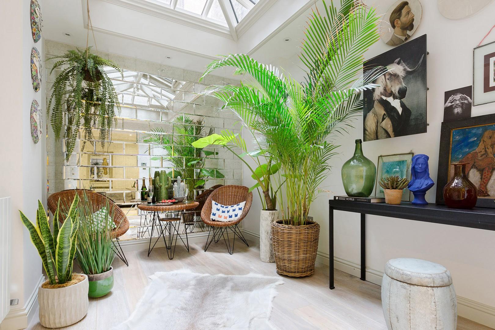 A serene indoor haven