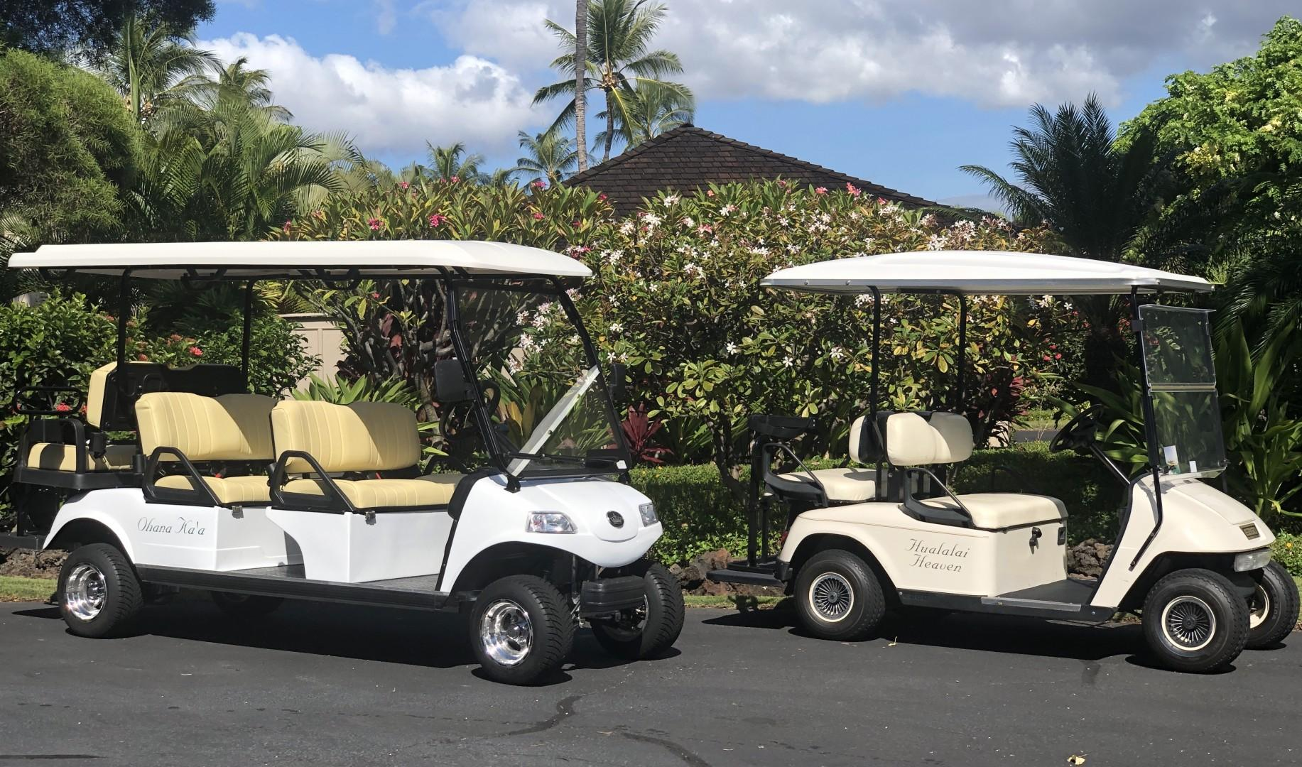 This rental comes with TWO golf carts! One four-seater and one six-seater golf cart.