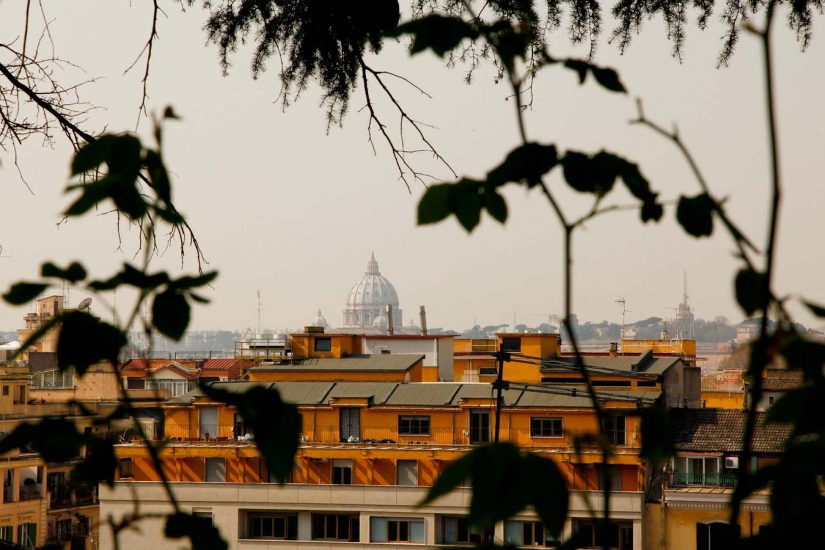 View from the garden. That is the dome of St. Peter's. Wow!