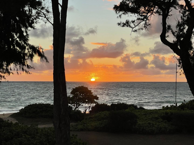 Sunrise skys!