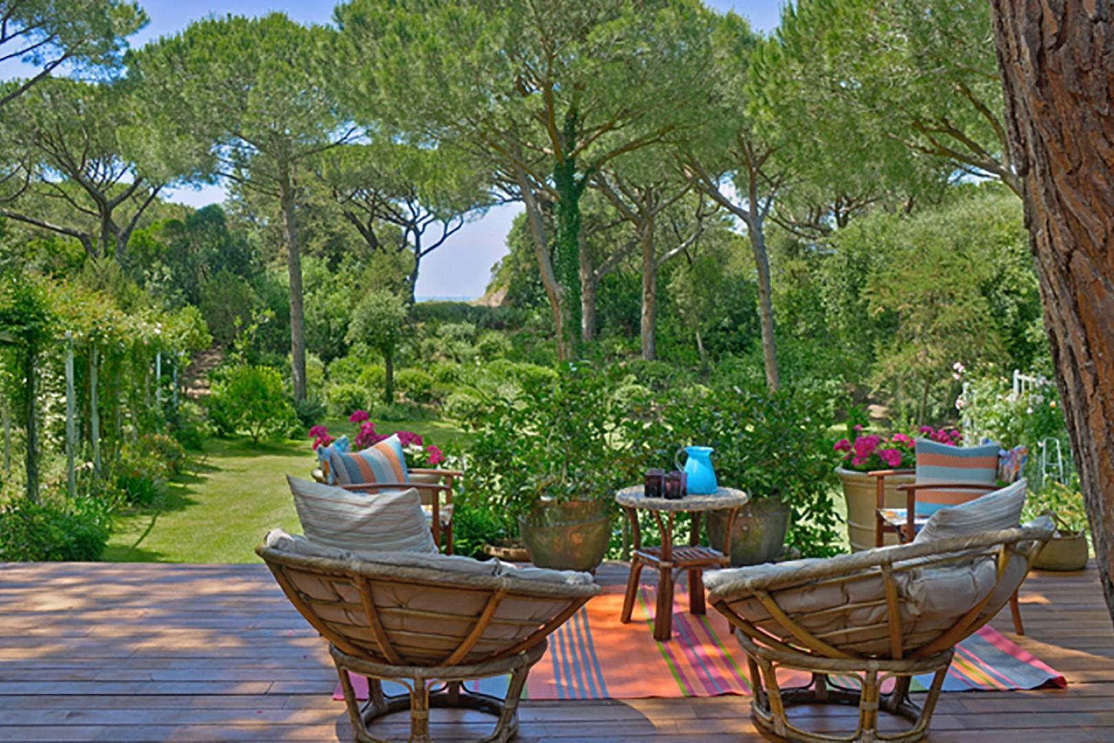 The estate is richly planted with fruit and olive trees, flowers and iconic umbrella pines.