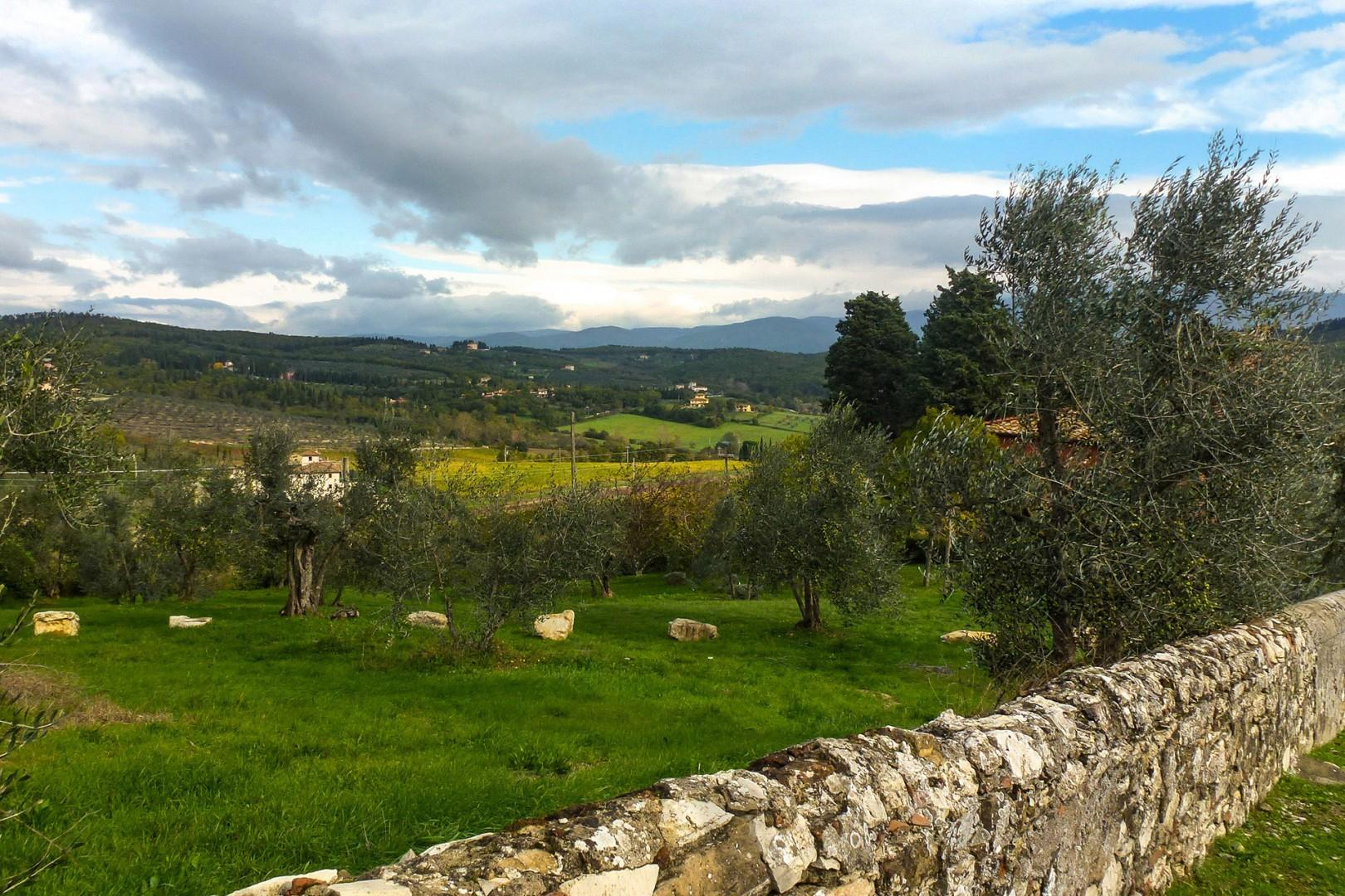 The estate produces several varieties of olive oil.