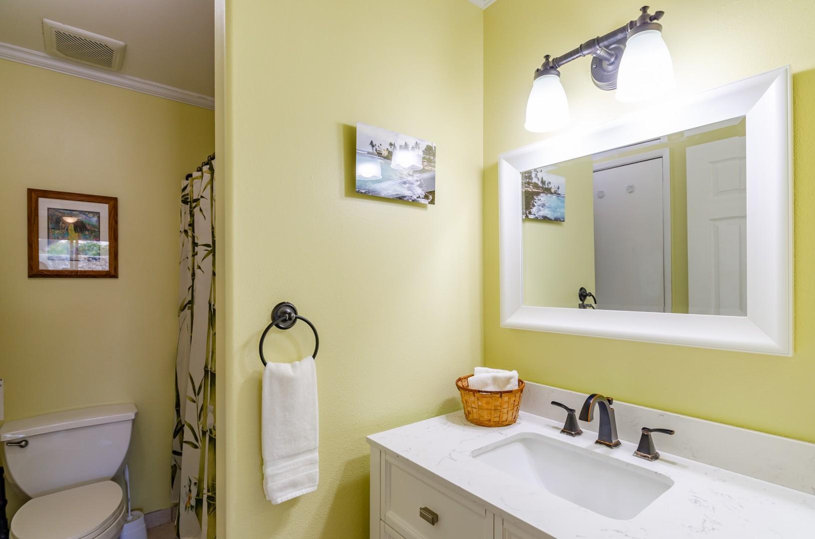 Downstairs guest bathroom