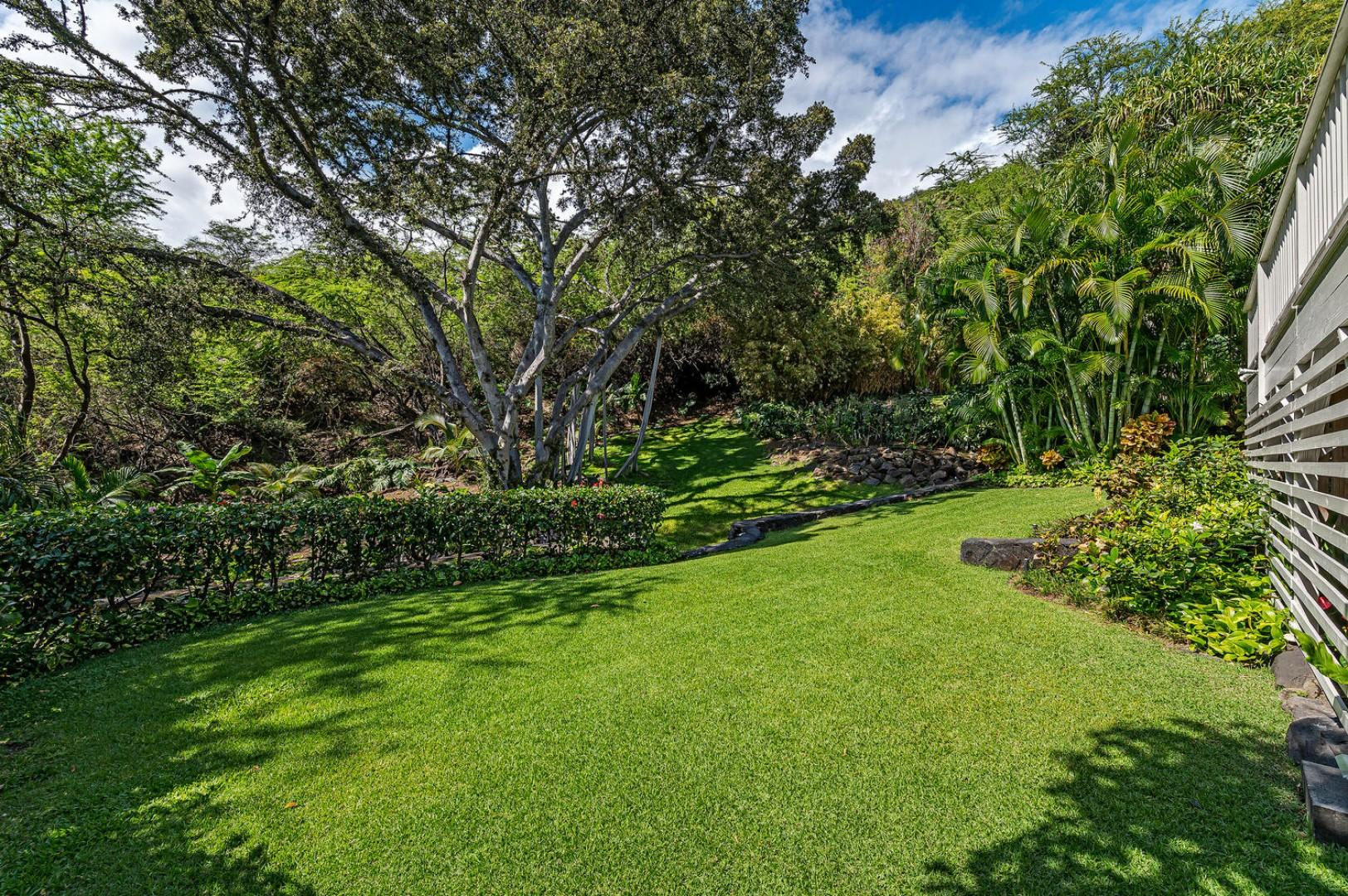 Grassy backyard, lots of space for children to play