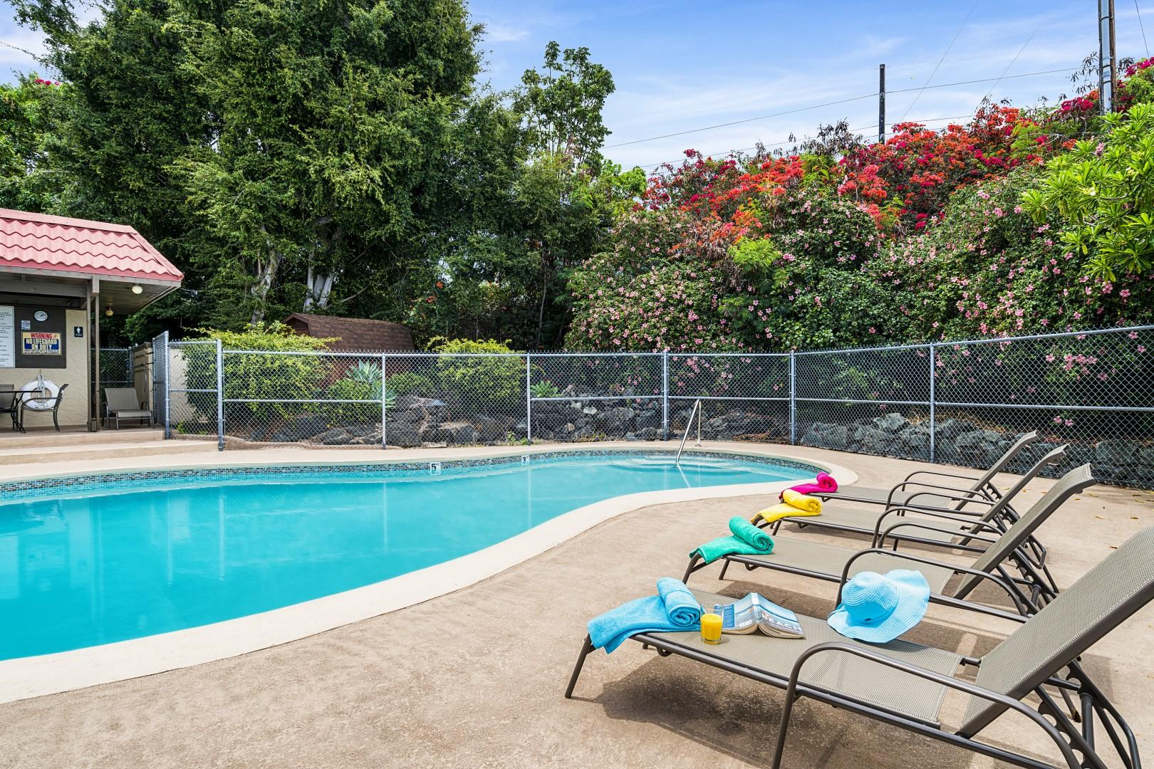Staged pool photos of Kona Mansions
