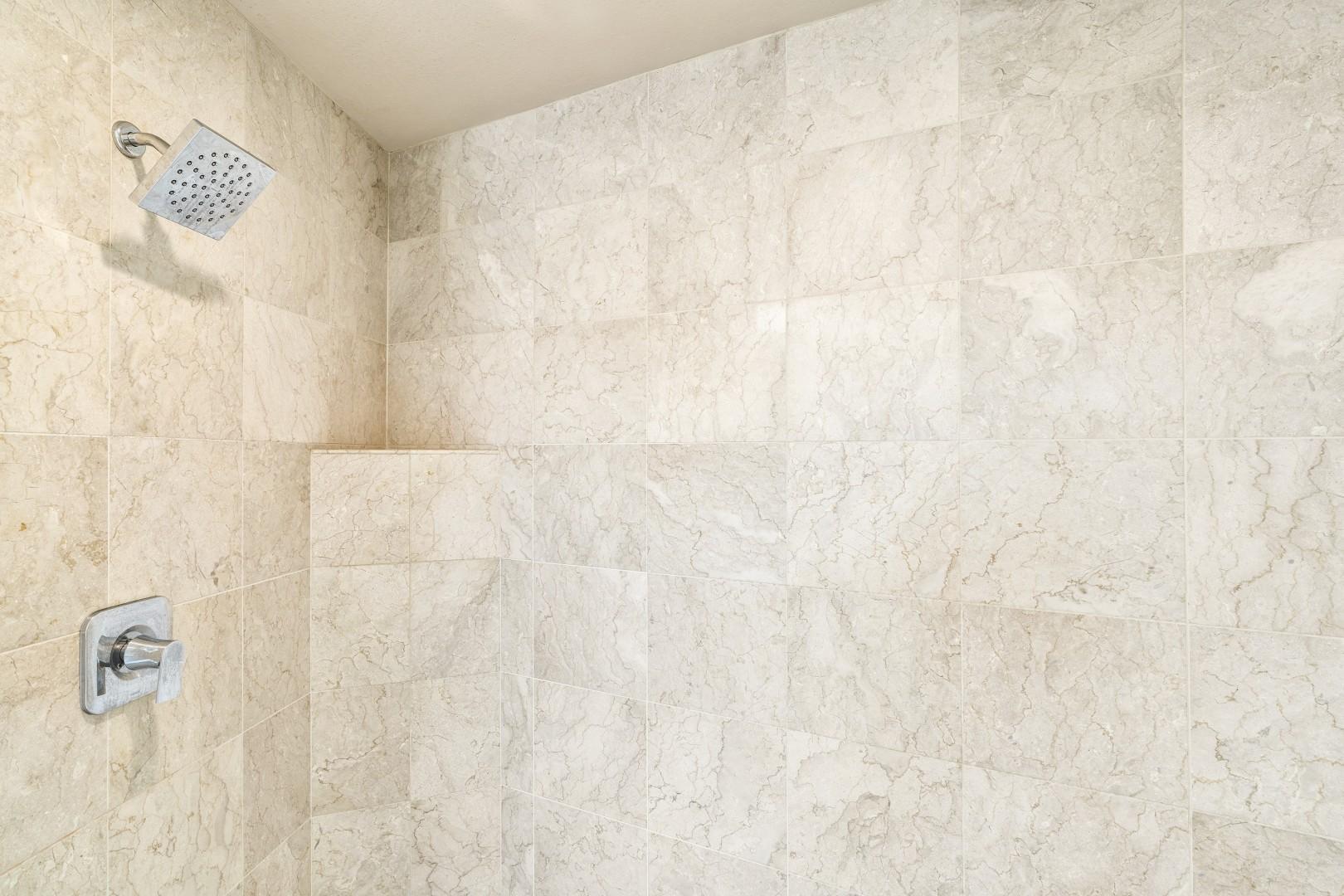 Guest bathroom walk in shower