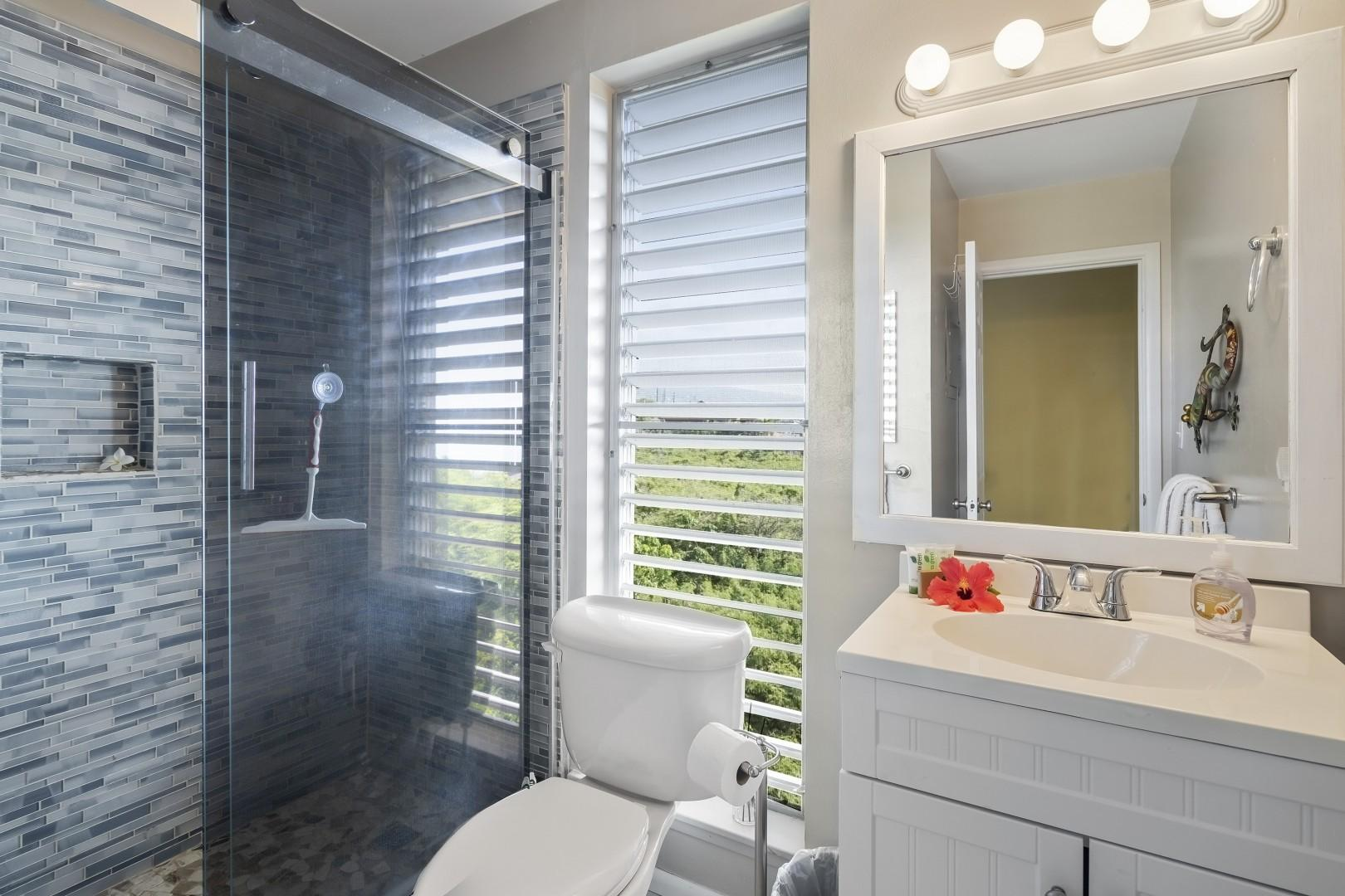 Upstairs renovated bathroom with walk in shower and mountain/ocean views!
