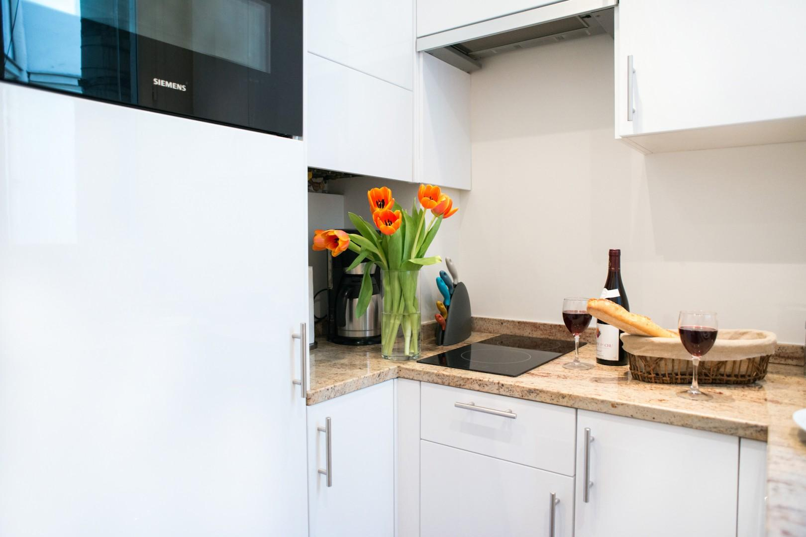 Combination microwave-oven and two-burner stove top
