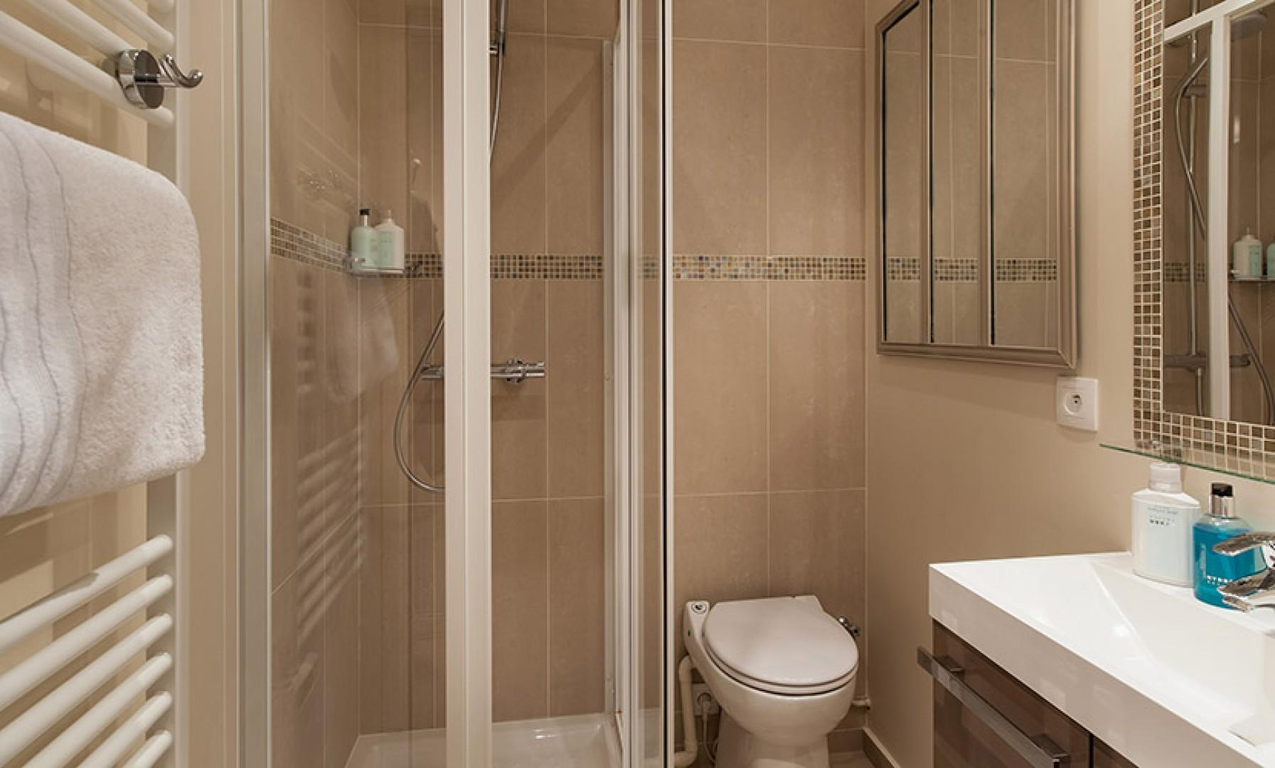 The luxurious bathroom is equipped with a shower, toilet and sink.