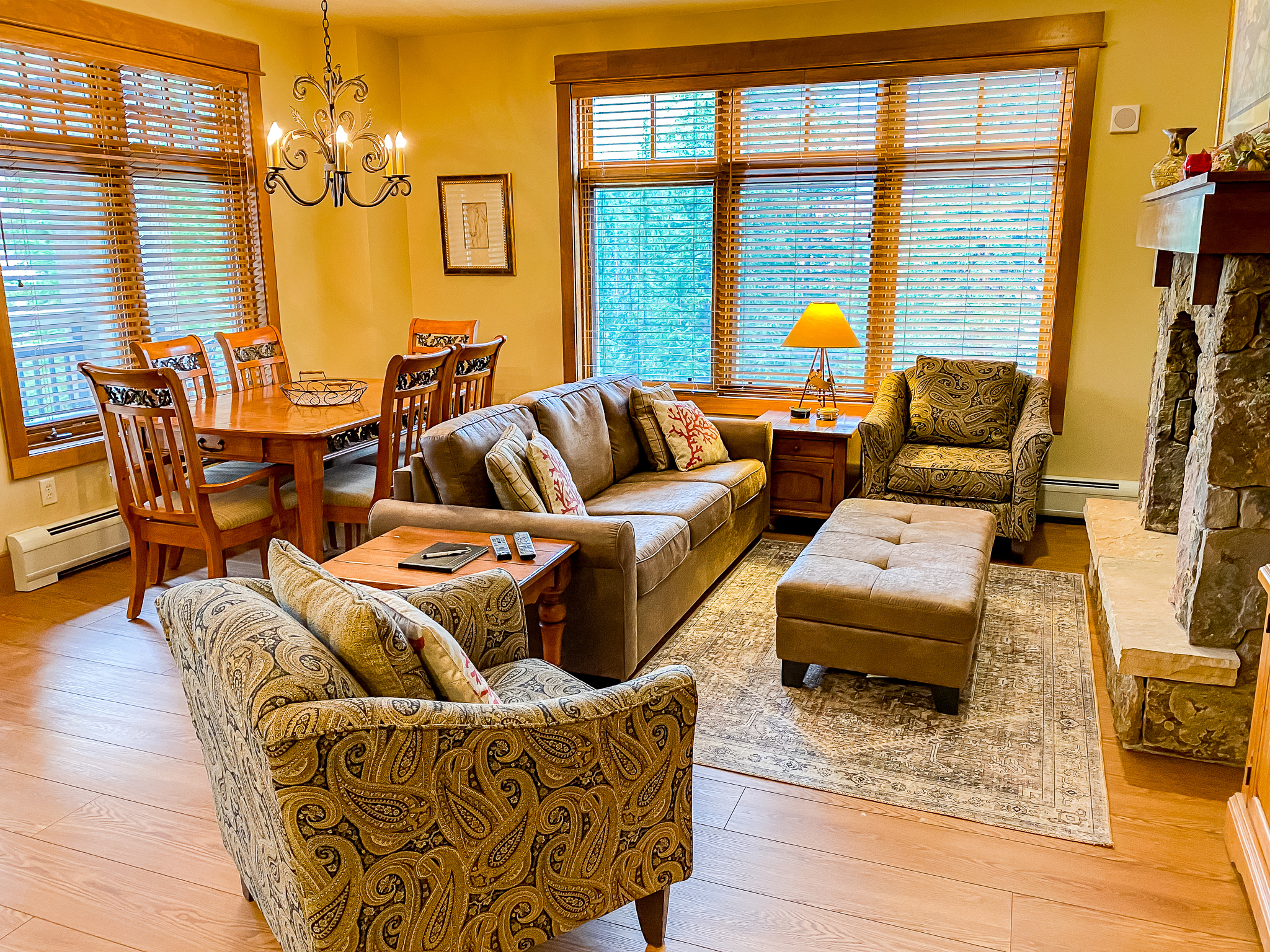 The living area features a flat screen TV, a gas fireplace and a queen-sized sleeper sofa.